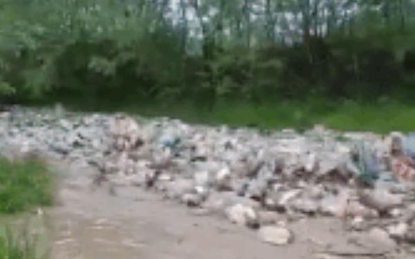 Đoạn video khiến ai cũng phải hoảng sợ về tương lai của Trái đất: Một trận lũ toàn rác là rác
