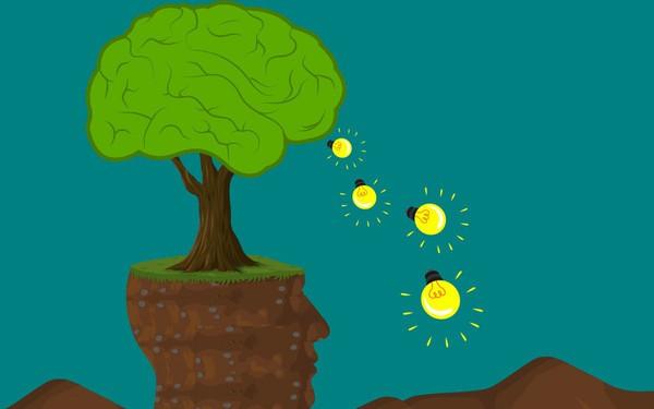 """Băn khoăn giữa một rừng ý tưởng – đâu mới là """"giỏ trứng vàng"""" đáng để đầu tư? Dưới đây là kim chỉ nam cho tất cả những người muốn khởi nghiệp"""