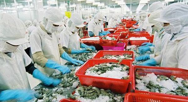 """Các """"ông vua"""" thủy sản liên tiếp gặp khó: """"Vua tôm"""" Minh Phú bị cáo buộc tránh thuế, """"Vua cá"""" Hùng Vương kinh doanh trục trặc"""