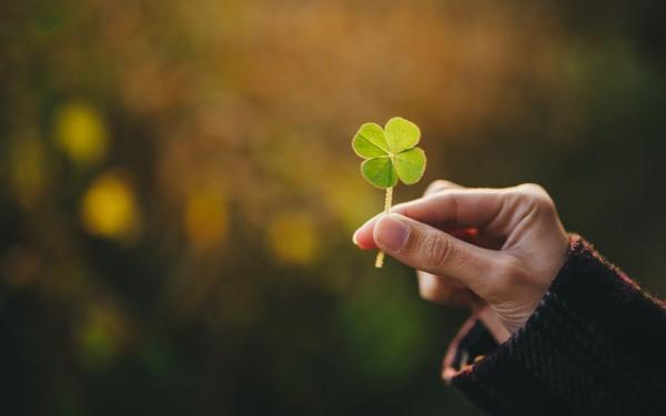 Nếu muốn thần may mắn mỉm cười với mình, hãy làm 3 điều này hàng ngày