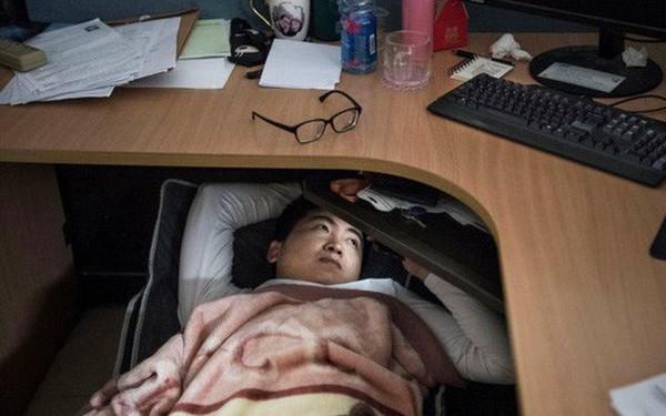 Hé lộ cuộc sống nhân viên Huawei tại công ty công nghệ kín tiếng bậc nhất thế giới