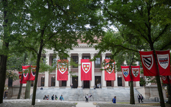 Là sinh viên Harvard có hào nhoáng và hoành tráng như bạn vẫn nghĩ ?
