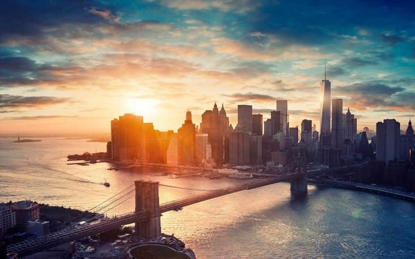 Chuyện lạ: Thành phố New York hoa lệ từng là bãi chiến trường giữa người và... lợn
