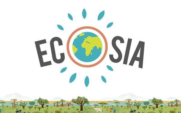 Muốn cứu Trái đất hãy bỏ Google: Công cụ tìm kiếm này dành 80% lợi nhuận để trồng rừng, cứ 45 lượt sử dụng lại thêm một cây xanh mới được tạo ra