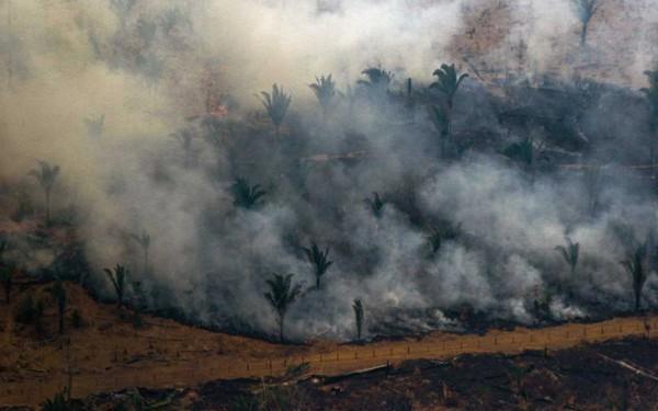 """Khu rừng lớn nhất thế giới Amazon cháy suốt 3 tuần, G7 """"nhón tay"""" hỗ trợ 22 triệu USD; Nhà thờ Đức bà Paris nhận quyên góp gần 1 tỷ USD chỉ sau 24h hỏa hoạn"""