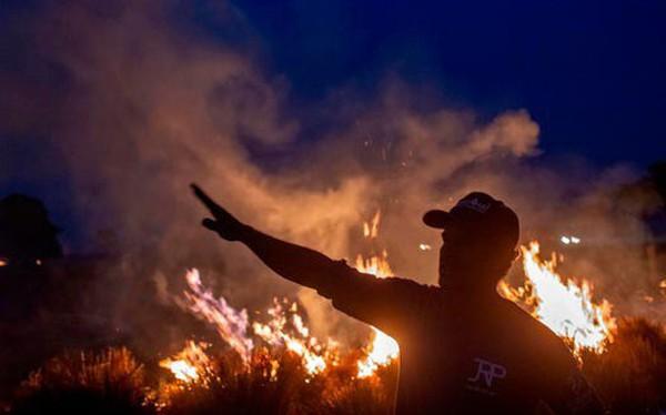 Image result for liên minh chống cháy rừng a ma zon