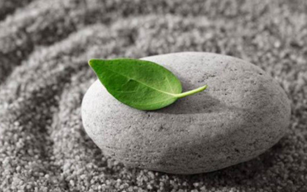 Bí quyết gặt vinh quang của người ưu tú: Làm việc cần tỉnh táo, làm người cần hồ đồ