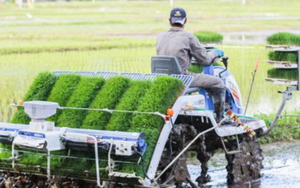 Toyota đang âm thầm cải tổ ngành nông nghiệp Nhật
