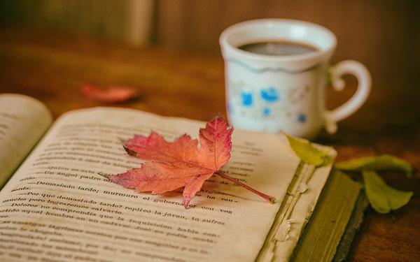 Đọc sách cần sáng suốt: Sách hay thành người tài; sách dở hại bản thân, hại luôn cả người khác