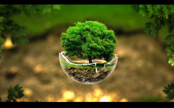 10 công nghệ có khả năng cứu lấy hành tinh của chúng ta (P1)