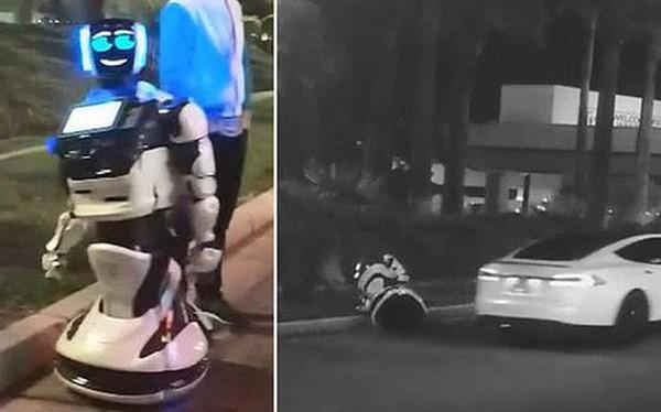 1 con robot bị xe tự lái Tesla tông chết, không thể tham dự CES 2019