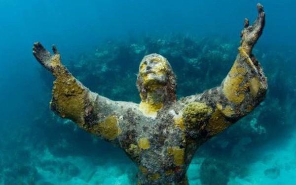Ảnh: Kinh ngạc trước những bí mật ẩn sâu dưới lòng đại dương