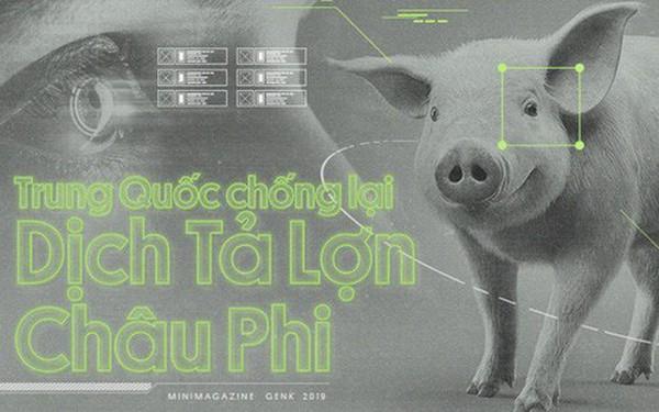 Trung Quốc chống lại dịch tả lợn châu Phi bằng công nghệ nhận diện mặt lợn như thế nào?