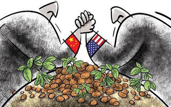 """Bloomberg: Ký một thỏa thuận chỉ toàn """"đậu nành, ngô và lúa mỳ"""" để làm gì khi điều quan trọng nhất thì ông Trump chưa đạt được?"""