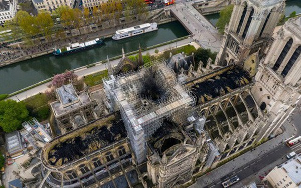 Nước Pháp không còn cây gỗ đủ cao để phục chế mái nhà thờ Đức Bà