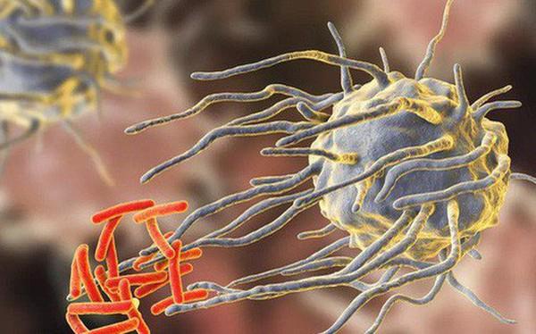 """""""Thuốc kháng sinh đang ngày càng trở nên vô dụng, nhiều bệnh thông thường cũng sẽ không thể điều trị được"""""""
