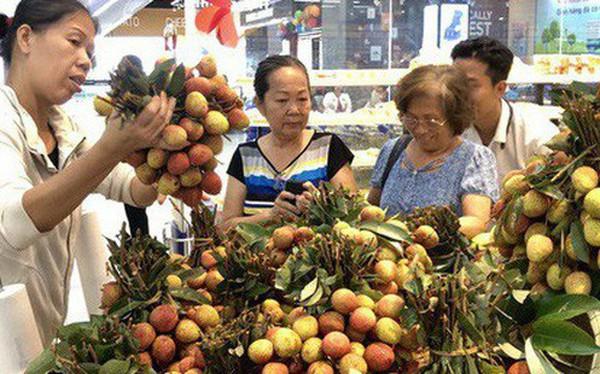 Ngay tại Bắc Giang, vải tươi loại 1 mua tại vườn đã 70.000 đồng/kg!
