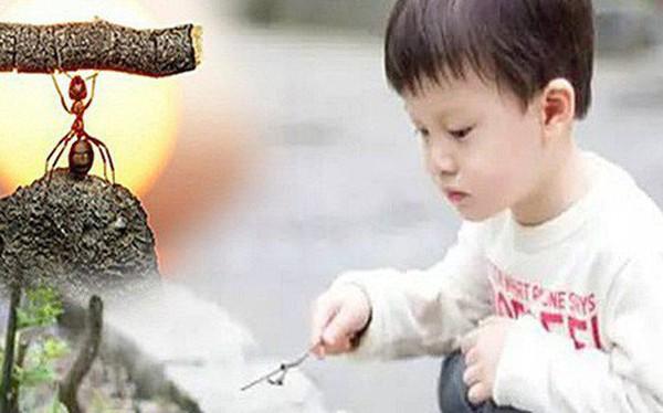 Vị tỷ phú bắt gặp đứa trẻ đang cầm lá nghịch kiến, tò mò hỏi một tiếng, ông ta nhận ra bài học nhớ đời từ câu trả lời ngây ngô