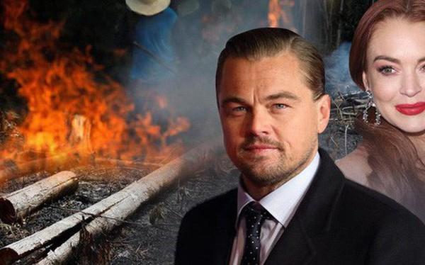 Kêu gọi sự quan tâm về cháy rừng Amazon nhưng bị Lindsay Lohan hỏi khó, Leonardo DiCaprio đáp trả ngay bằng bài viết 2 triệu like