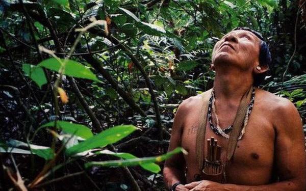 """Tù trưởng bản địa gần rừng Amazon và thông điệp cay đắng: """"Rồi các anh sẽ chìm trong sợ hãi, như cảm giác chúng tôi đang trải qua lúc này"""""""