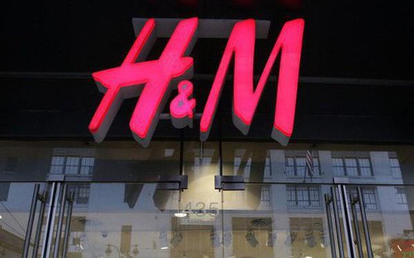 Bảo vệ rừng Amazon, hãng thời trang H&M ngừng mua đồ da của Brazil