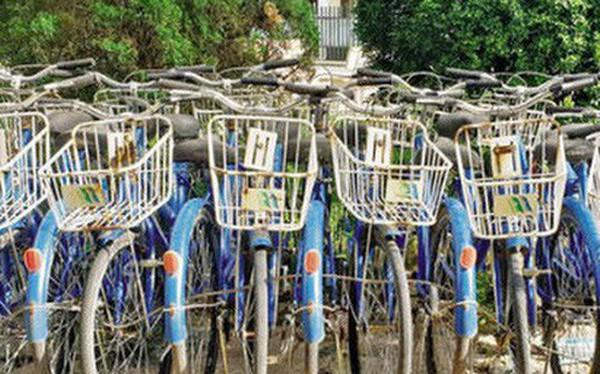 Ngoài xe buýt, đường sắt đô thị, Hà Nội sắp có cả xe đạp công cộng