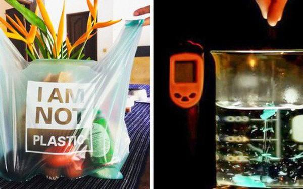 Chiếc túi này chính là thứ sẽ thay đổi toàn bộ cuộc chiến chống nhựa trên toàn thế giới: Chẳng khác gì túi nylon nhưng lại... bổ dưỡng cho sinh vật biển