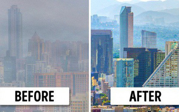 Niềm hy vọng cho các thành phố ô nhiễm: Phát minh biến không khí bẩn thành oxy tinh khiết, hiệu quả ngang cả trăm cây xanh tự nhiên