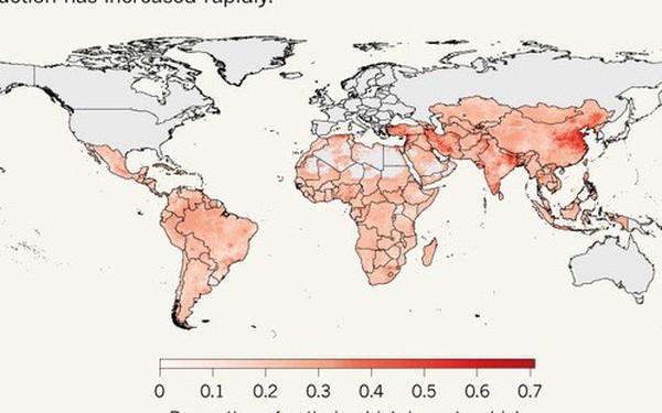 Báo động đỏ tình trạng kháng kháng sinh trên động vật ở Ấn Độ và Trung Quốc