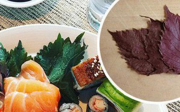 """""""Lá hồi sinh"""": loại rau bán đầy chợ Việt Nam, chỉ 1k - 2k/mớ mà ở Nhật lại được xem trọng vô cùng, còn phải mua từng lá một"""