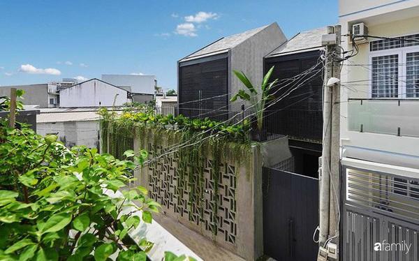 Ngôi nhà phố ngập tràn cây xanh và ánh nắng dù kín cổng cao tường ở Sài Gòn của cặp vợ chồng thành đạt quê gốc miền Trung