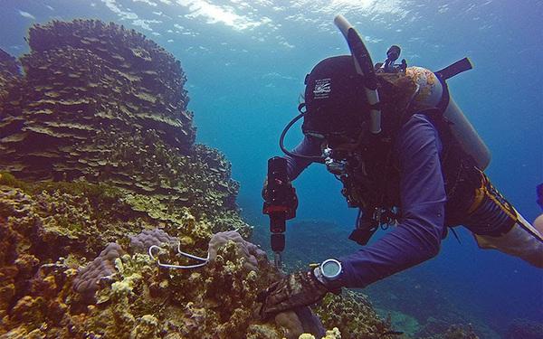 Giải pháp khoan, cắt, bắt vặn vít ốc cho các công trình dưới nước