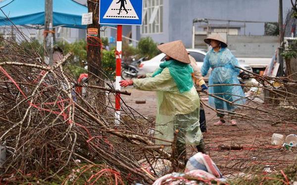 """Hà Nội: Mưa gió chiều 30 Tết lại bị ép giá, người buôn đào quất quyết vặt trụi hoa quả và bỏ lại """"núi"""" rác"""