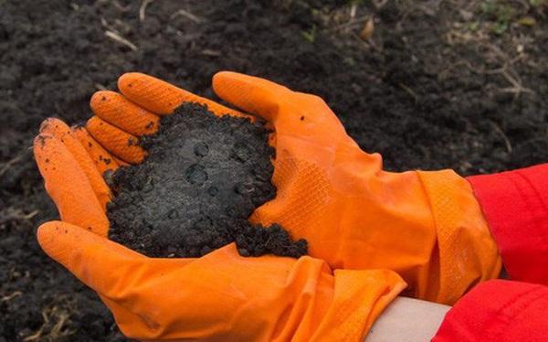 """Phát hiện ra """"quả bom hẹn giờ"""" ẩn trong đất: chất hóa học công nghiệp có khả năng ảnh hưởng tới hệ miễn dịch và khả năng sinh sản trên người"""