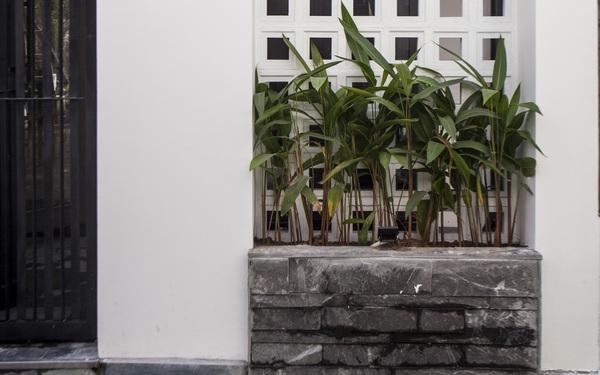 Ngôi nhà 2,5 tầng được áp dụng phong cách tối giản ở Đà Nẵng
