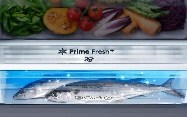 Tủ lạnh diệt khuẩn, thiết bị không thể thiếu trong gian bếp hiện đại