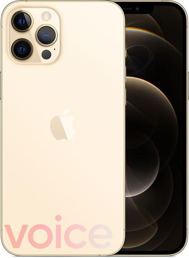 Loạt iPhone 12 lộ ảnh render trước giờ ra mắt, có màu xanh biển hoàn toàn mới - Ảnh 4.