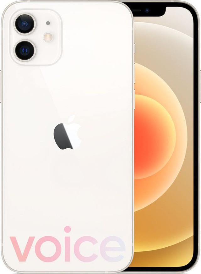 Loạt iPhone 12 lộ ảnh render trước giờ ra mắt, có màu xanh biển hoàn toàn mới - Ảnh 8.