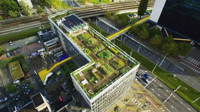 Thành phố Rotterdam: Sống chung với lũ 800 năm, trở thành đô thị lớn thứ 2 Hà Lan và cảng biển lớn nhất Châu Âu - Ảnh 1.