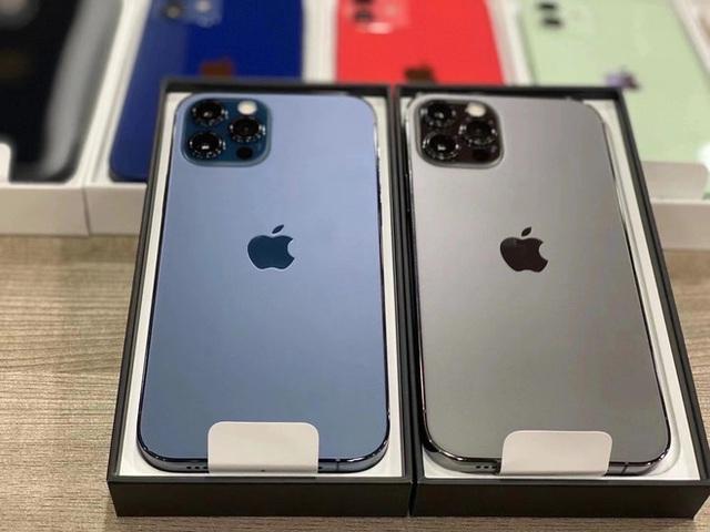 Lộ diện full màu các mẫu iPhone 12, phiên bản màu xanh blue bị chê tới tấp - Ảnh 3.
