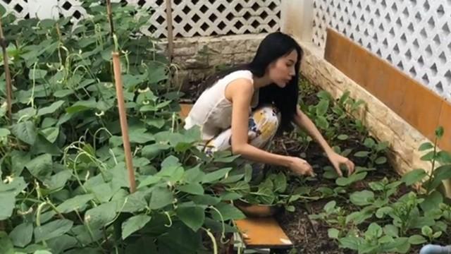 Cuộc sống giản đơn của vợ chồng Công Vinh - Thuỷ Tiên: Cùng nhau chăm sóc vườn rau sạch, tự tay thu hoạch củ quả, ăn không hết đem tặng hàng xóm - Ảnh 9.