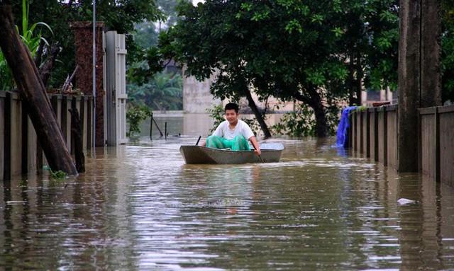 Nước sông Lam dâng cao, Nghệ An ngập lụt trên diện rộng - Ảnh 6.