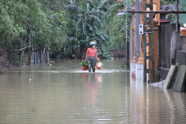Nước sông Lam dâng cao, Nghệ An ngập lụt trên diện rộng - Ảnh 7.