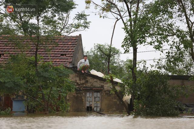 Hơn 2 tuần chịu trận lũ lịch sử, người dân Quảng Bình vẫn phải leo nóc nhà, bơi giữa dòng nước lũ cầu cứu đồ ăn - Ảnh 11.
