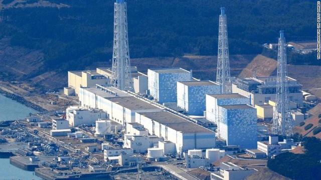 Kế hoạch đổ nước nhiễm phóng xạ vào đại dương của Nhật Bản có thể thay đổi DNA của loài người - Ảnh 1.