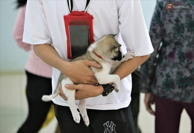 Ảnh: Ký túc xá trú bão 5 sao của người dân làng biển Quảng Ngãi - Ảnh 21.