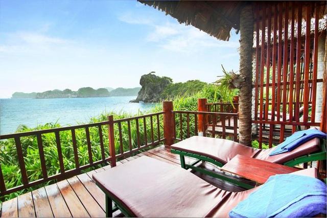Ông chủ khùng bán hết biệt thự Hà Nội ra đảo vắng trải nghiệm 5 năm kinh hoàng - Ảnh 4.