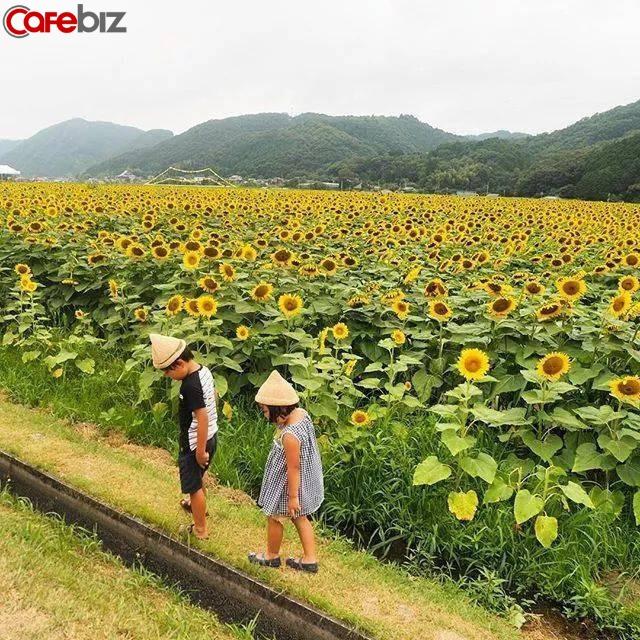 Hai vợ chồng 8X nghỉ việc về quê trồng rau làm ruộng: Thay vì mù quáng theo đuổi vật chất thành thị, chỉ cần có khoảng sân nhỏ và sống chậm rãi đã là hưởng thụ cuộc sống - Ảnh 6.