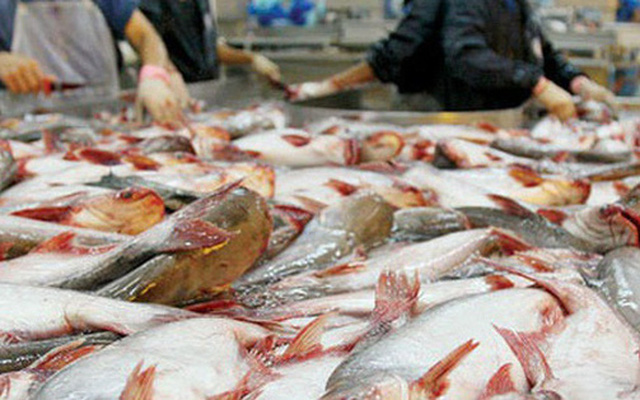 Đặt mục tiêu 20 tỷ USD vào năm 2030, chiến lược dài hơi nào cho con cá, con tôm Việt?