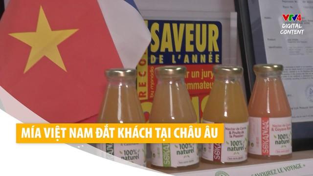 Nước mía made in Vietnam đắt hàng ở châu Âu nhờ nhân duyên cách đây 8 năm của ông chủ người Pháp - Ảnh 4.